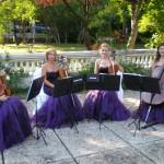 anima-cvartet-impresariat-booking-artisti