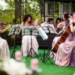 passione-cvartet-tarife-onorariu-cotatii-evenimente