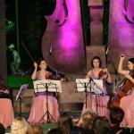 passione-cvartet-petrecere-firme-corporate-party-evenimente
