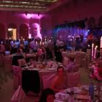 higher-ground-orchestra-nunta-impresariat-booking-rezervare-oferta-evenimente