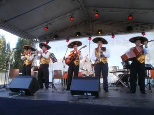 contact-los-platanos-preturi-tarife-evenimente-nunta-concert-botez-petrecere-privata-cile-localitate-impresariat-onorariu